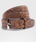 cintura-Pitone-scoiattolo