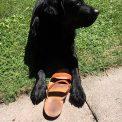 giorgio_loderer_---sandalo-Moira